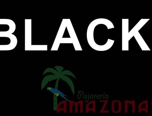 BLACK FRIDAY descuentos hasta 50% Sólo 4 Días