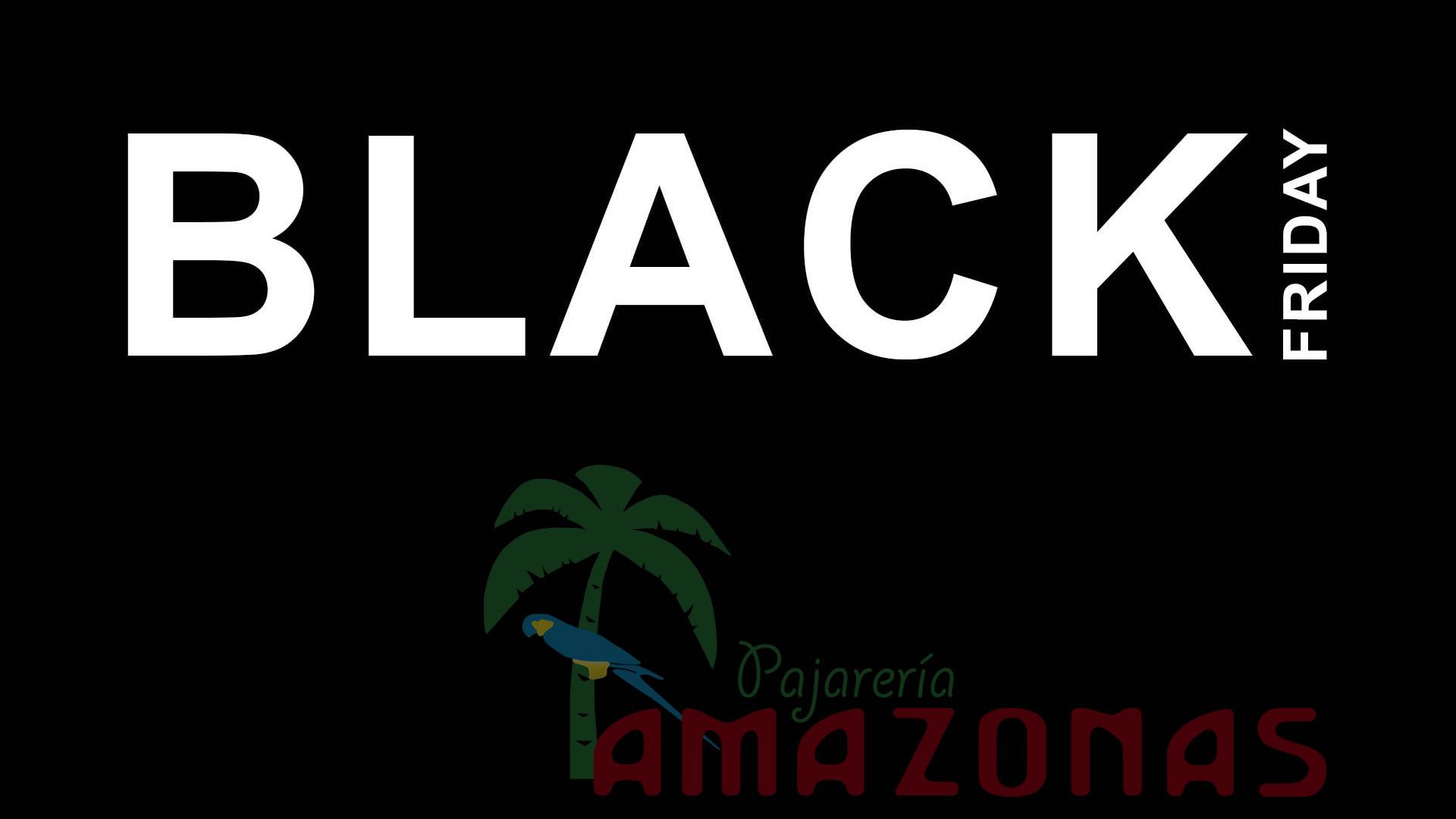 descuentos amazon black friday 2019