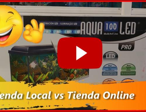 Tiendas Local Vs Tiendas Online | Siempre Tiendas de Barrio